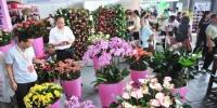 昆明花卉去年出口额达1.7亿美元 远销46个国家和地区 - 云南频道