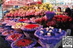 昆明斗南花卉市场情人节前玫瑰价格已翻番 - 云南信息港