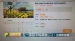 图源:央视财经 - 云南频道